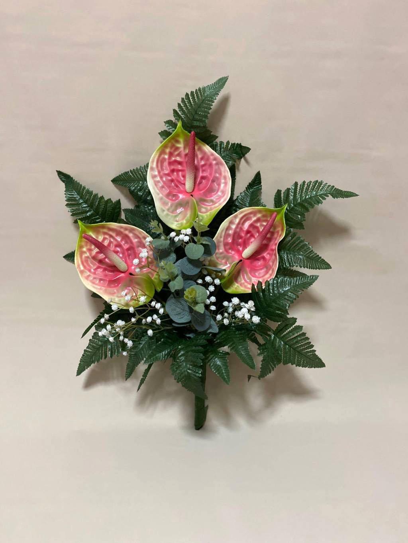 fascio auterium rosa
