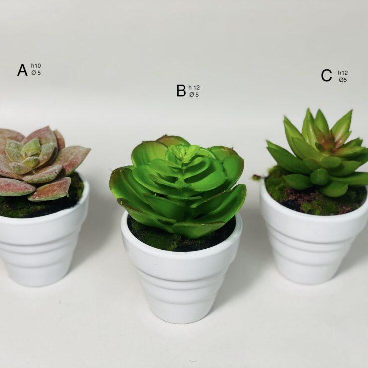 pianta grassa artificiale